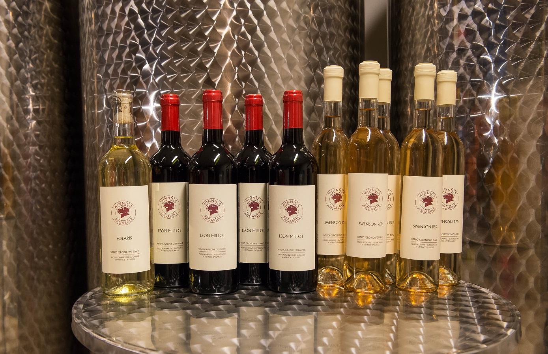 wino, białewino, czerwonewino, polskiewino, polskie, wino, wine, polishwine