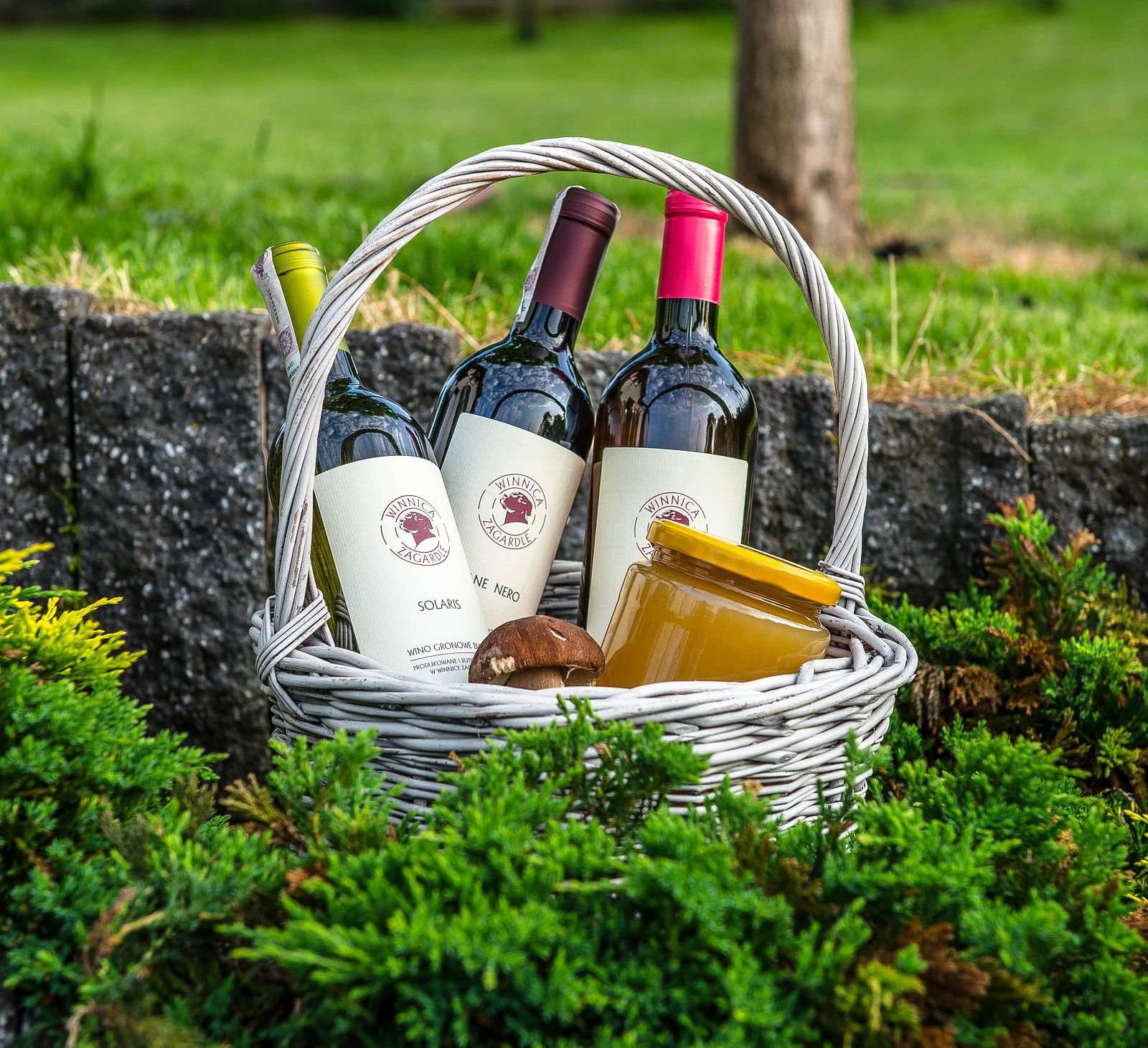 wino, winnica, polska