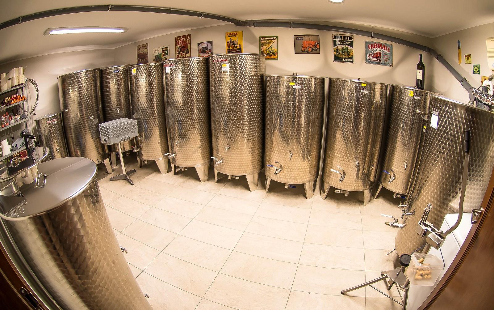 przetwórnia, wina, winnica, winifikacja, winogrona, wino