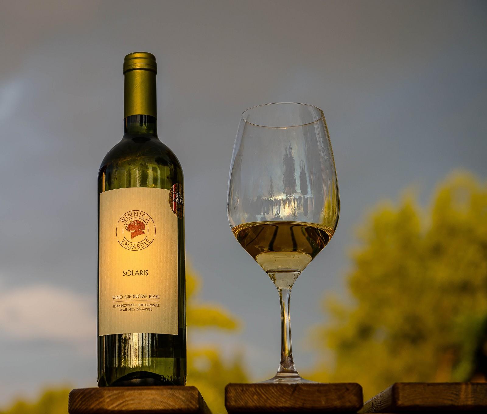 polskie, wino, polishwine, białe wino, winnica, polskie wino